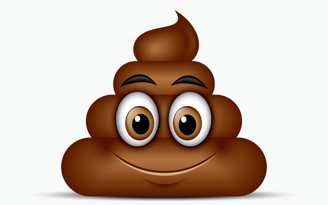KNOW YOUR POOP, IT CAN TELL YOU A LOT